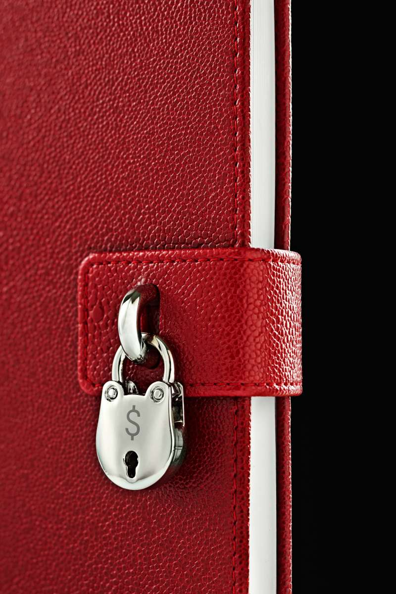 Close up of lock on diary with money symbol