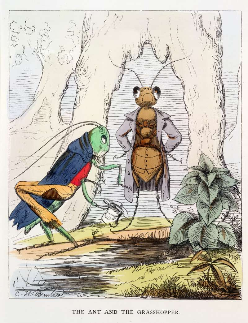 Aesop Fables' The ant and the grasshopper.
