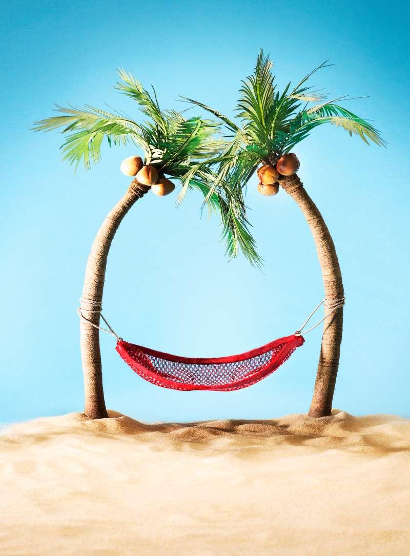 Hammock underneath palm trees