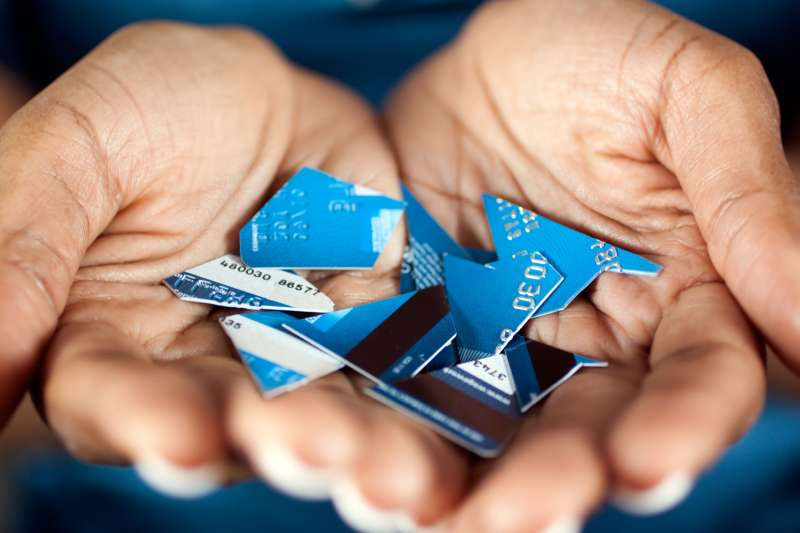 pieces of credit card in hands