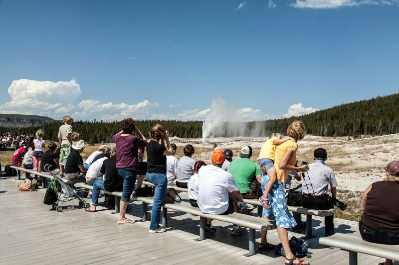 Crowds watch the eruption of Castle Geyser in Yellowstone National Park.