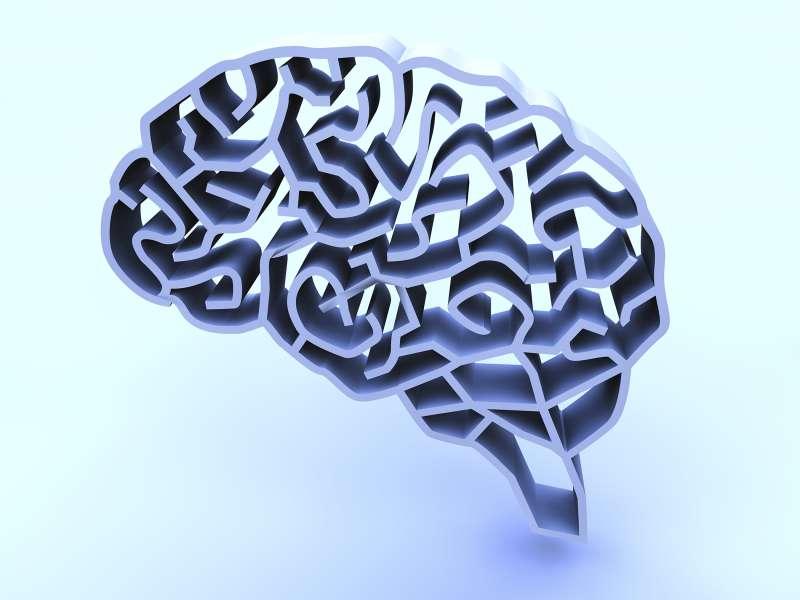 brain-shaped maze