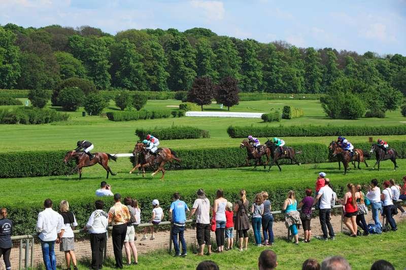 spectators watching horse race