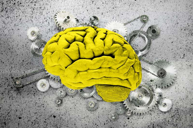 brain on top of cogs