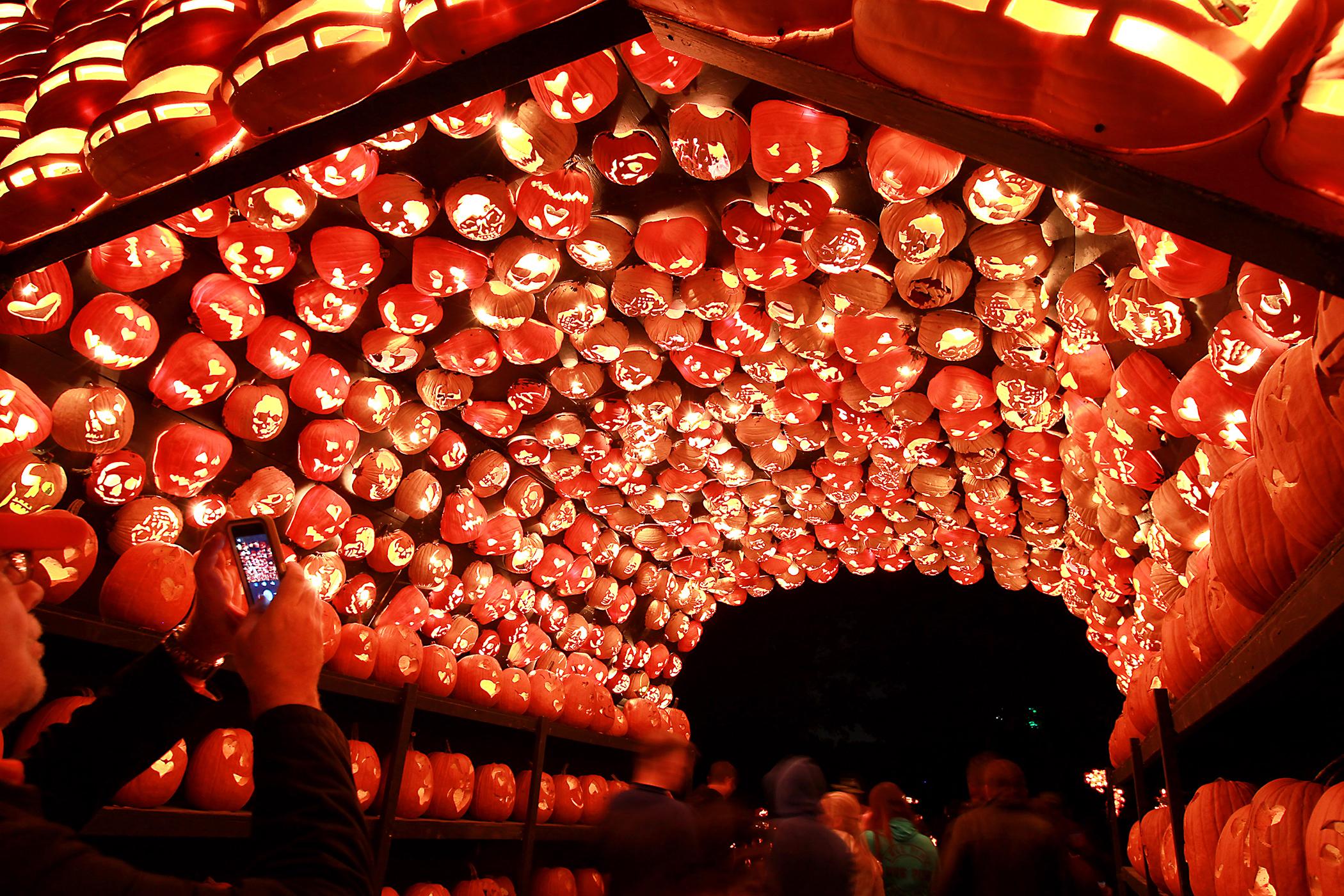 151019_EM_Halloween_Pumpkins