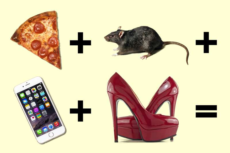 illustration of equation with pizza, rat, mobile phone, and sexy heels