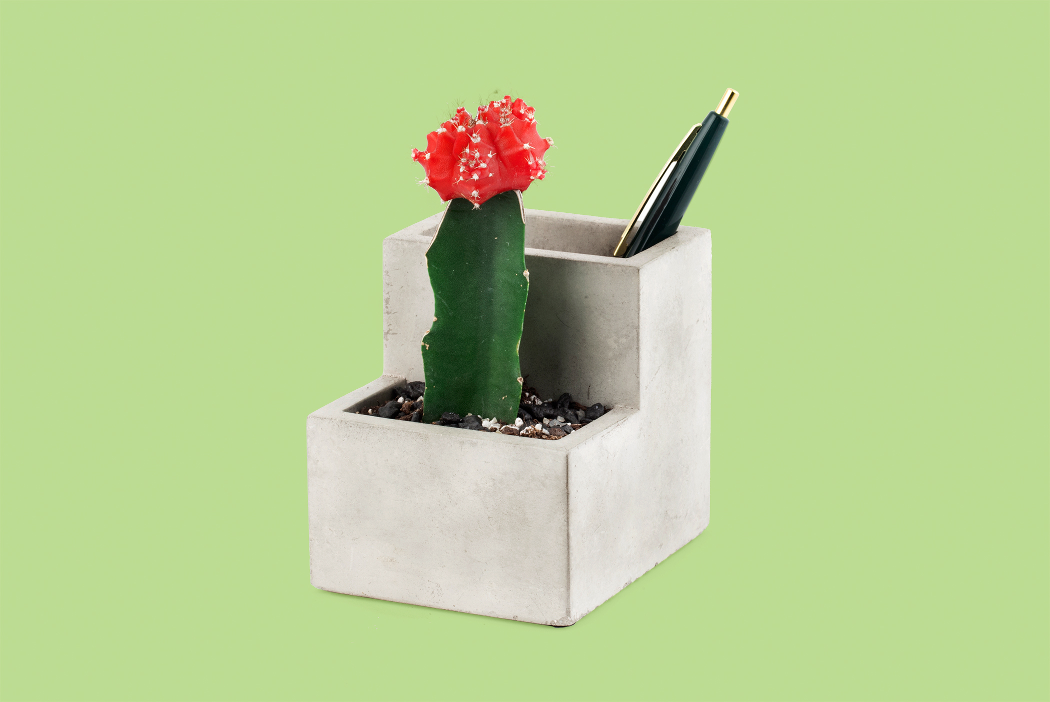 Concrete Small Planter and Pen Holder from Kikkerland.com