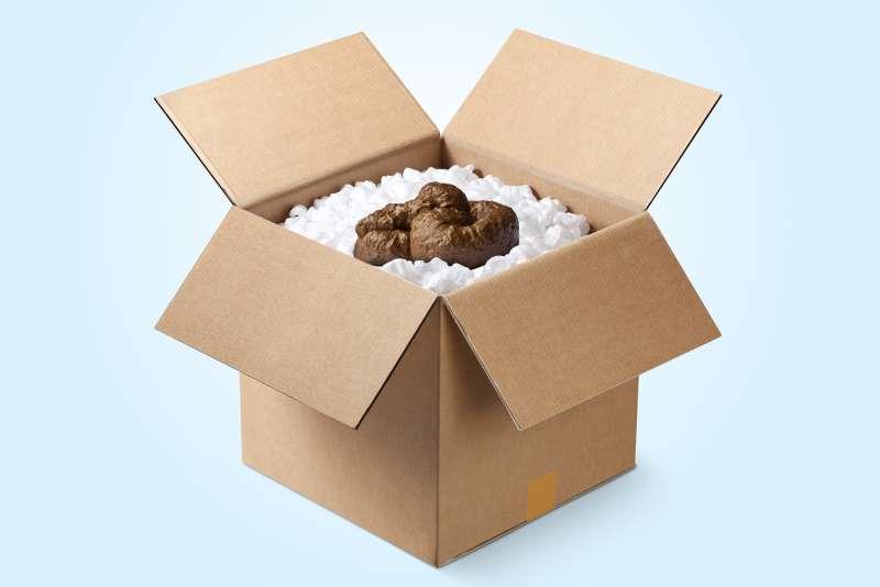 poop in box