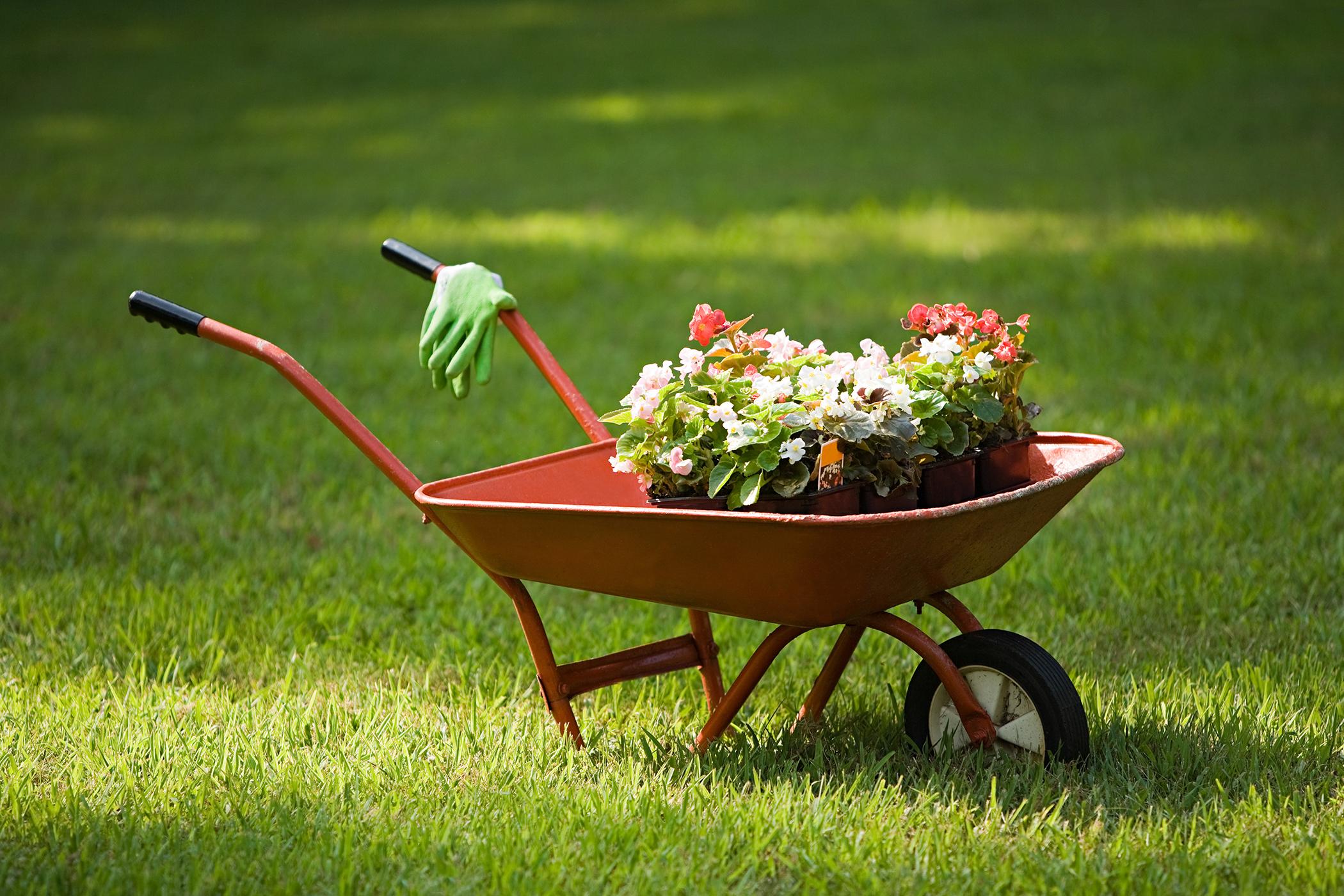 Gardening supplies on sale