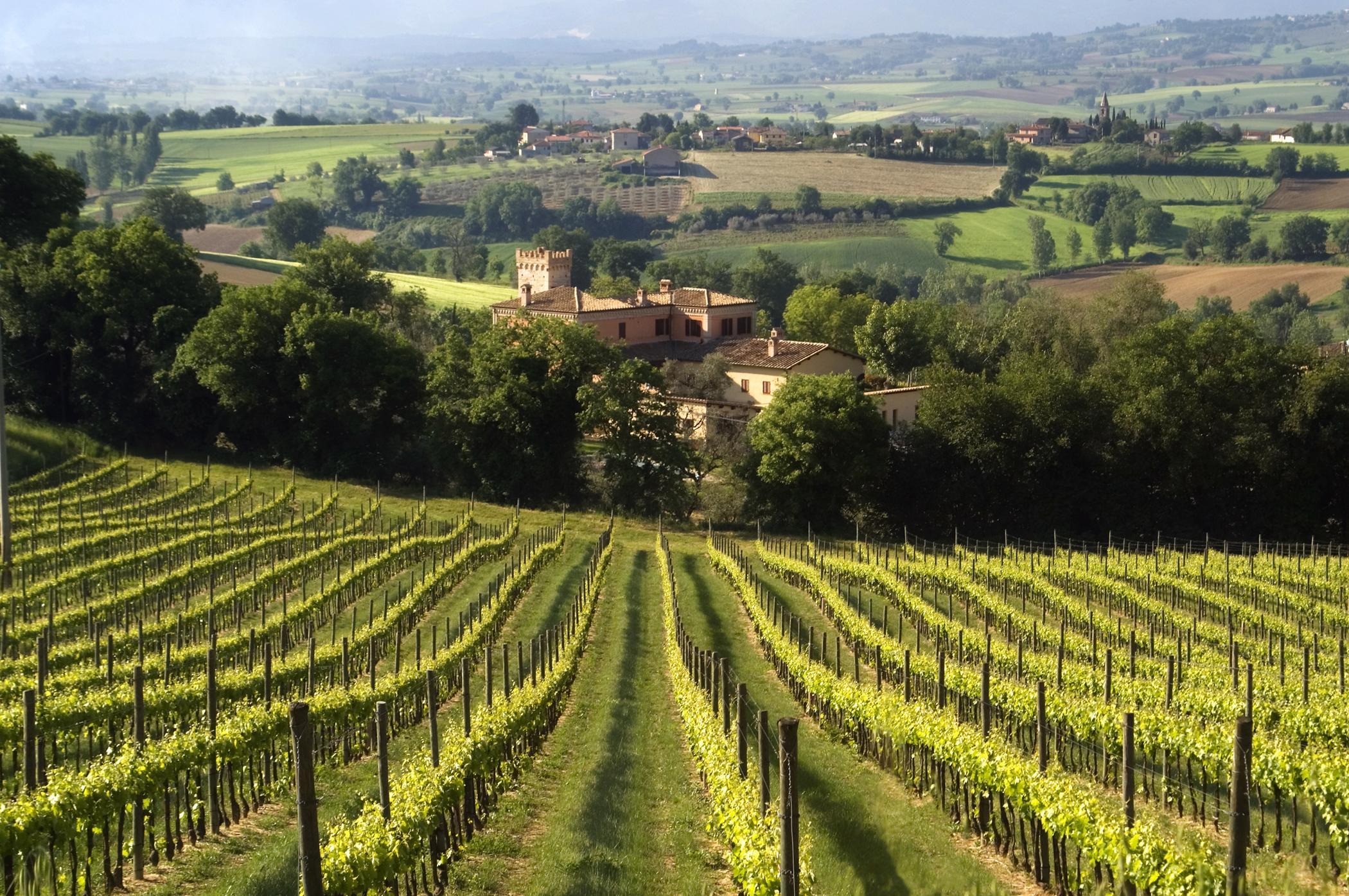 The Antonelli winery in Umbria