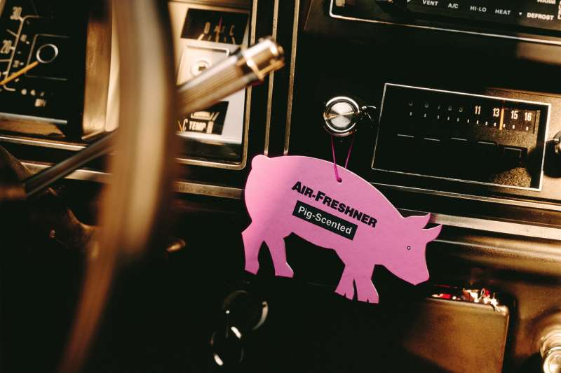 pig air freshener in car