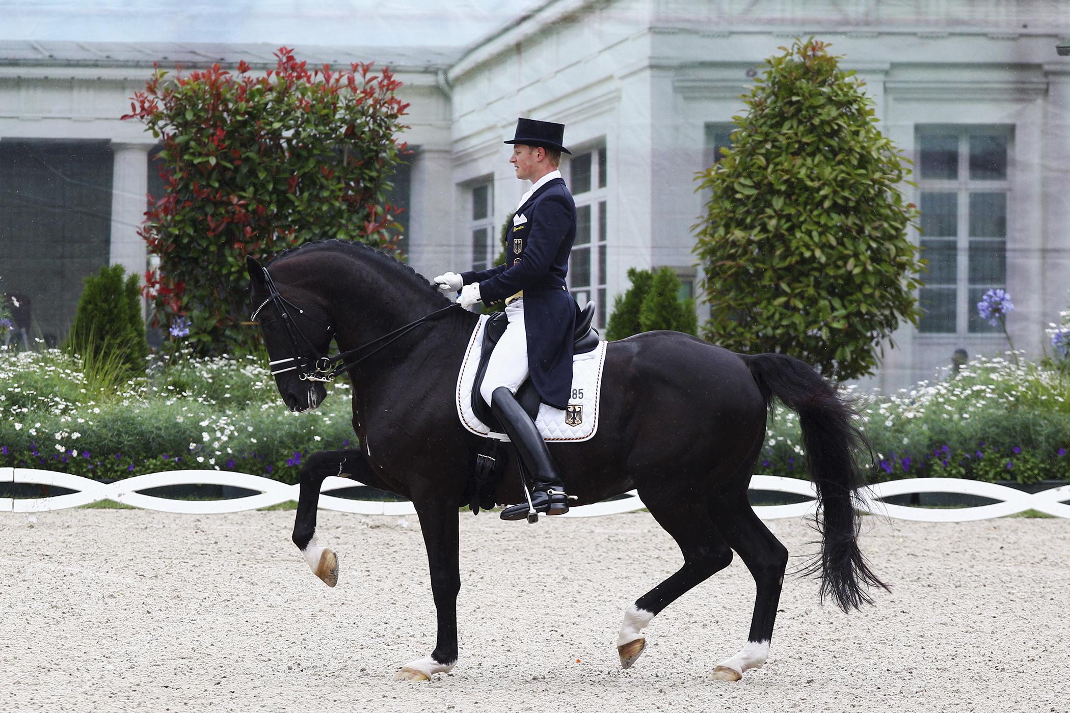 160504_GAL_Horse_Dressage