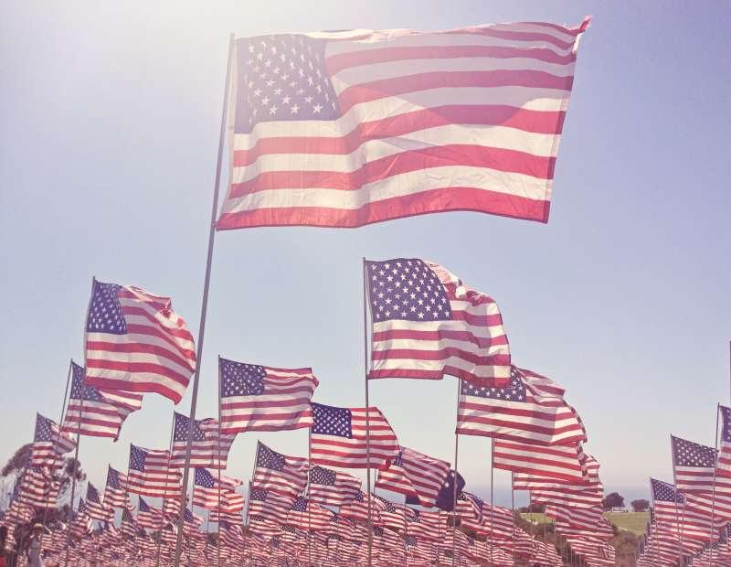 Hazy field of flags