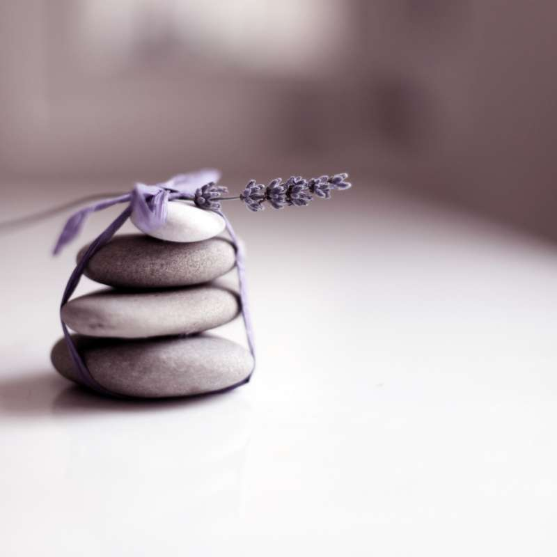 Pebbles Stack And Plant Tied With Ribbon On Table