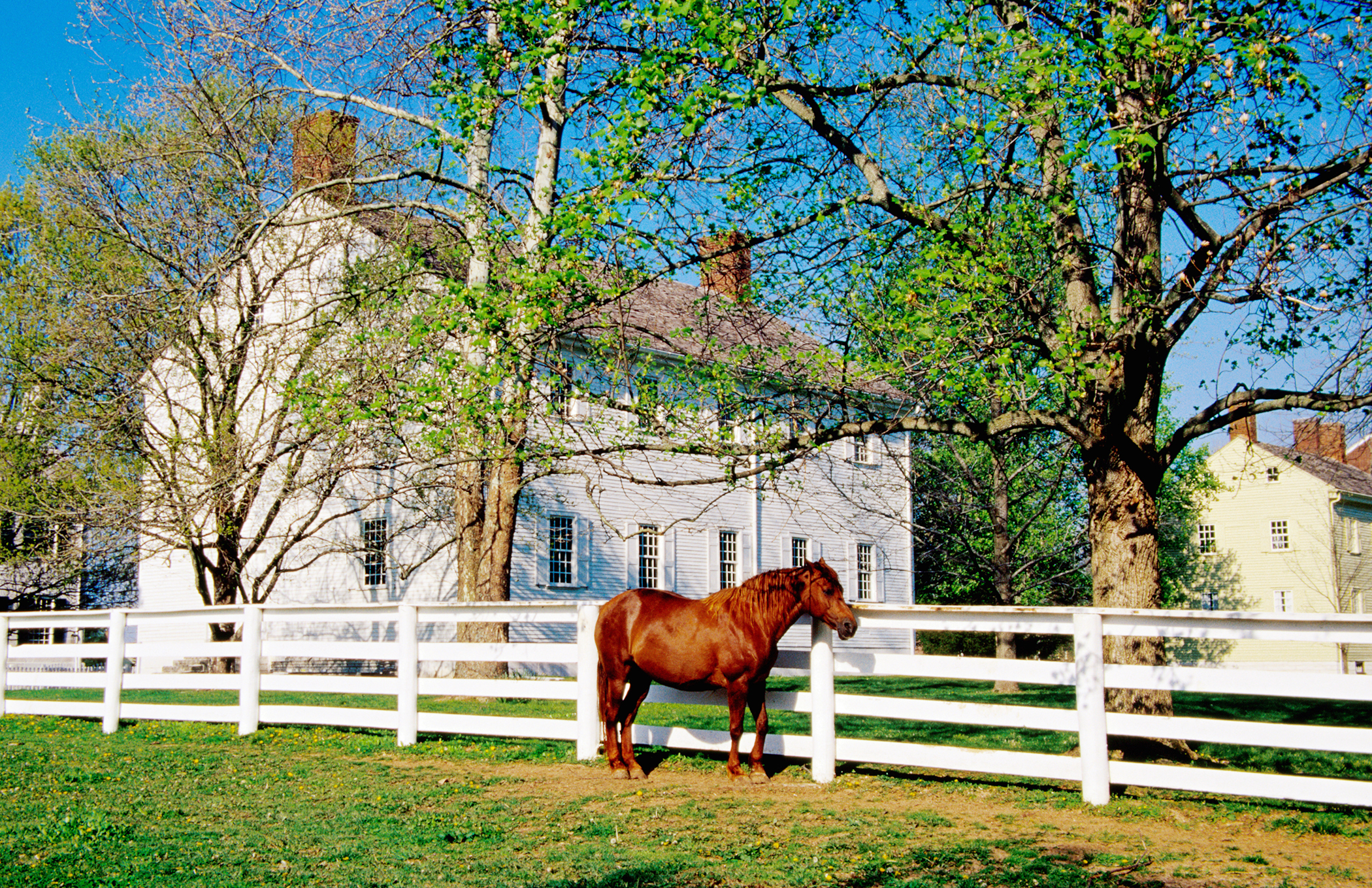 Lexington, Kentucky. The Horse Capital of the World is in the center of the inner Bluegrass Region. And have we mentioned you will never have to worry about finding good bourbon again?