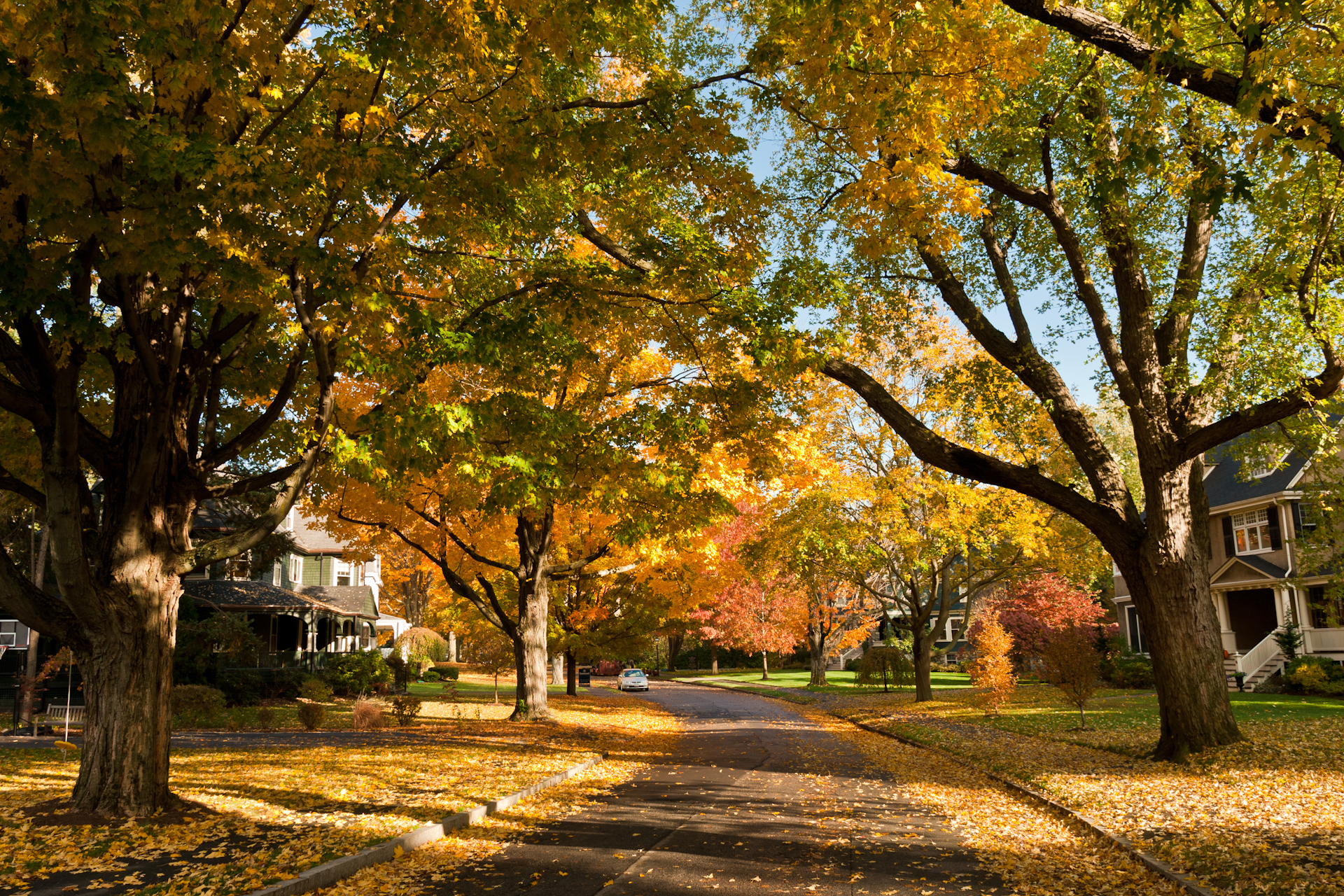7. Newton, Massachusetts:  Fall looks good on Newton. The town's median household income is $118,799 and the median home price is $920,000.