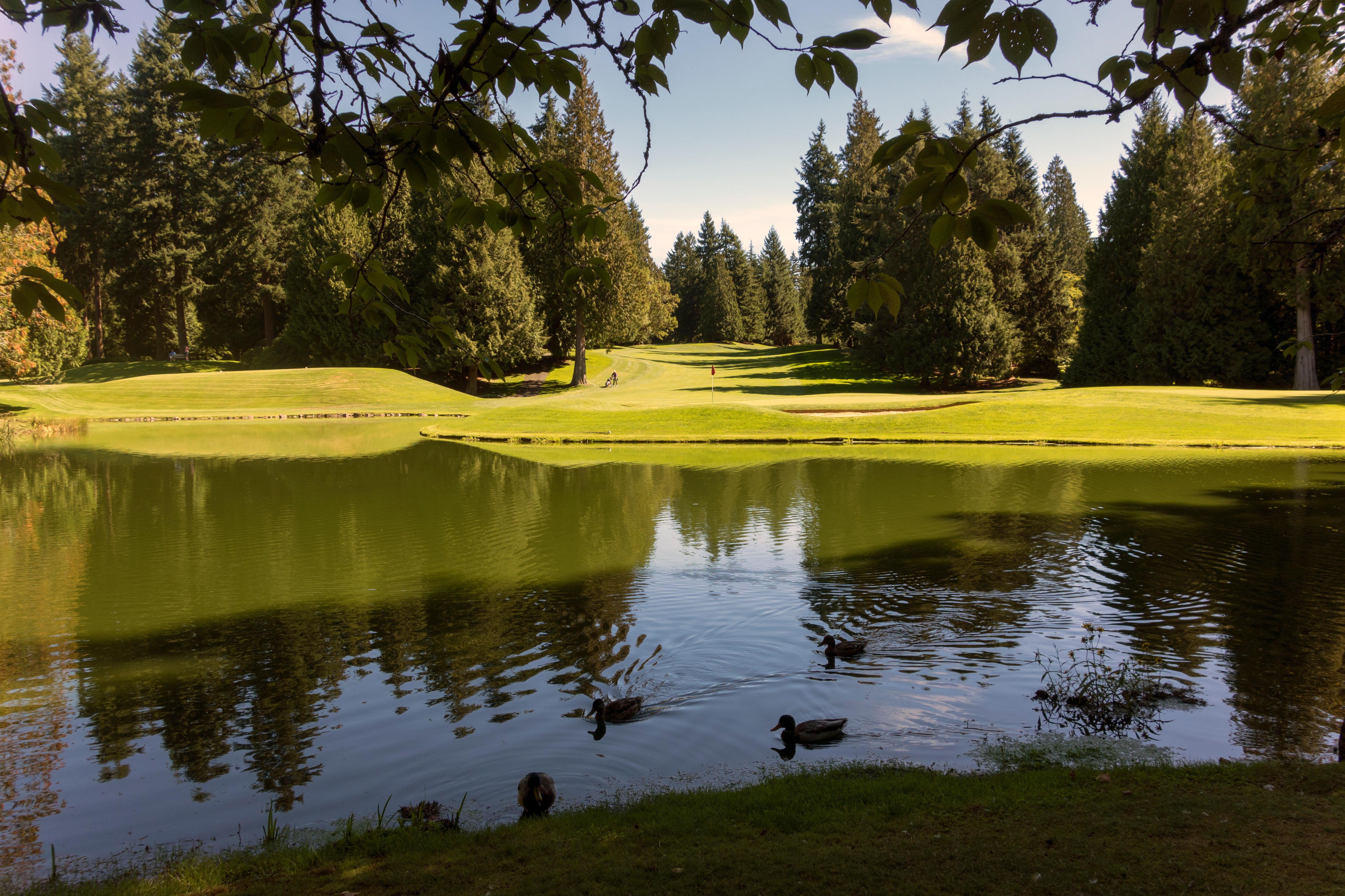 3. Sammamish, Washington: The Seattle-area town is a close third, with a $141,305 median household income. Which gives residents plenty of green to indulge in a round at the Sahalee golf course and Country Club.