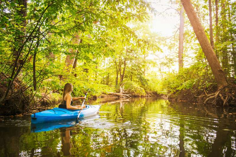 Young woman kayaking on forest river, Cary, North Carolina, USA