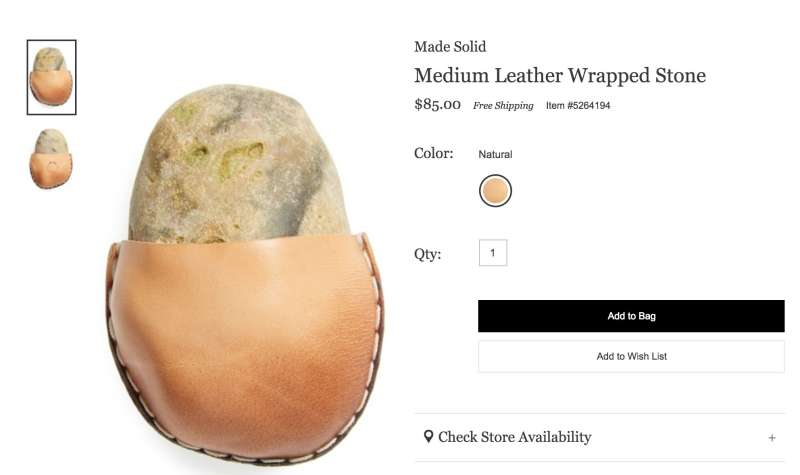 Nordstrom is selling a rock on its website for $85.