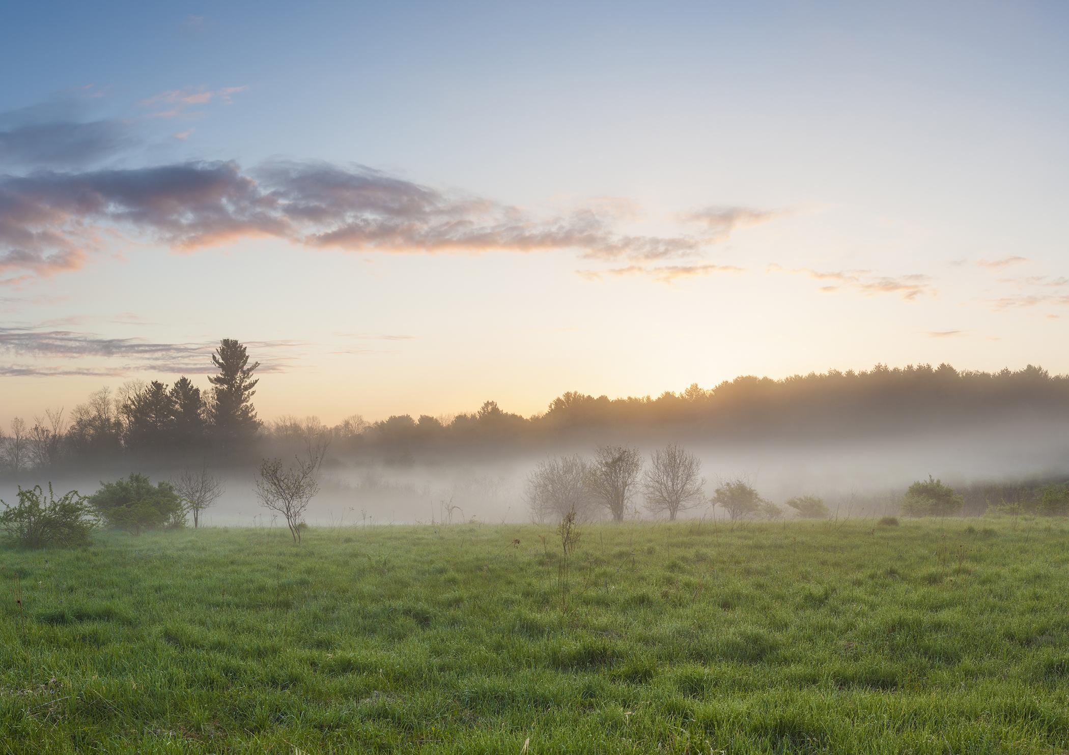 Nature in Durham, NH.