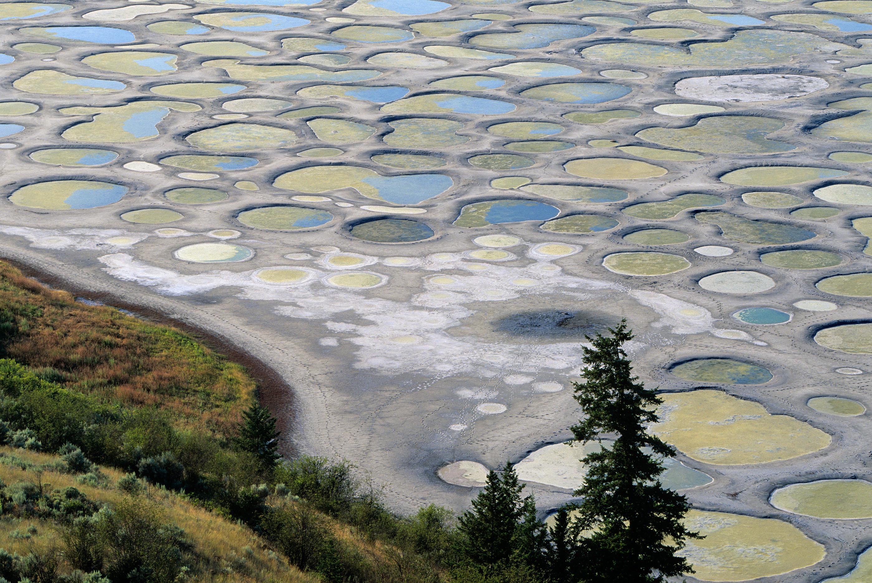 171108-wonders-spotted-lake