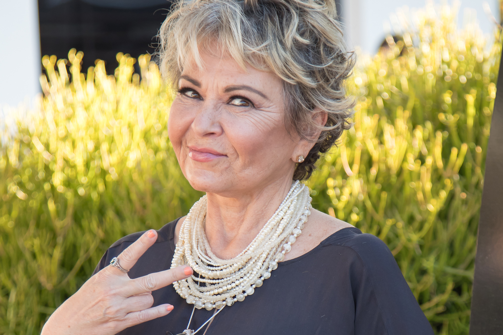 171222-cryptocurrency-rosanne-barr