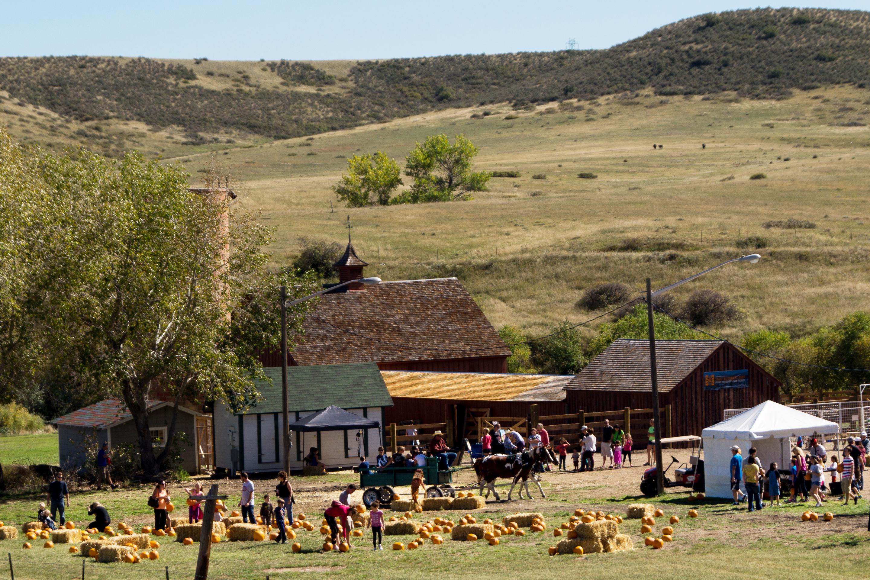 171211-Lone-Tree-Colorado