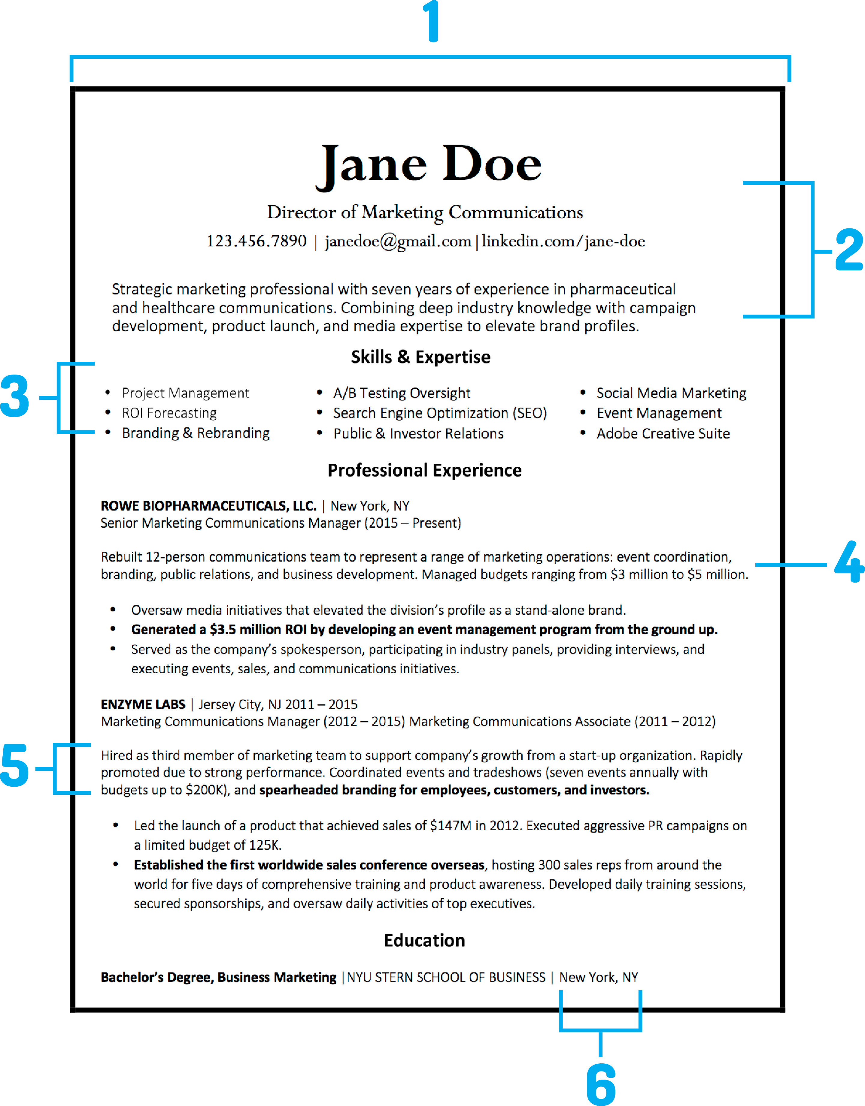 daily resume search