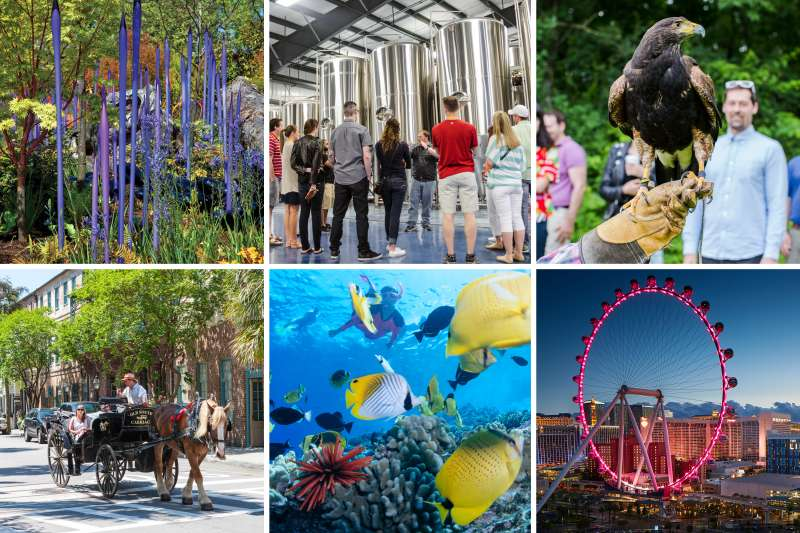 (clockwise from top left) Chihuly Garden and Glass, Seattle, Washington; City Brew Tour, Burlington, Vermont; Falconry beginner's lesson, The Greenbreier, White Sulphur Springs, West Virginia; The High Roller at The LINQ, Las Vegas, Nevada; Snorkeling in the Molokini Crater, Maui, Hawaii; Old South Carriage Historic Tour, Charleston, South Carolina.