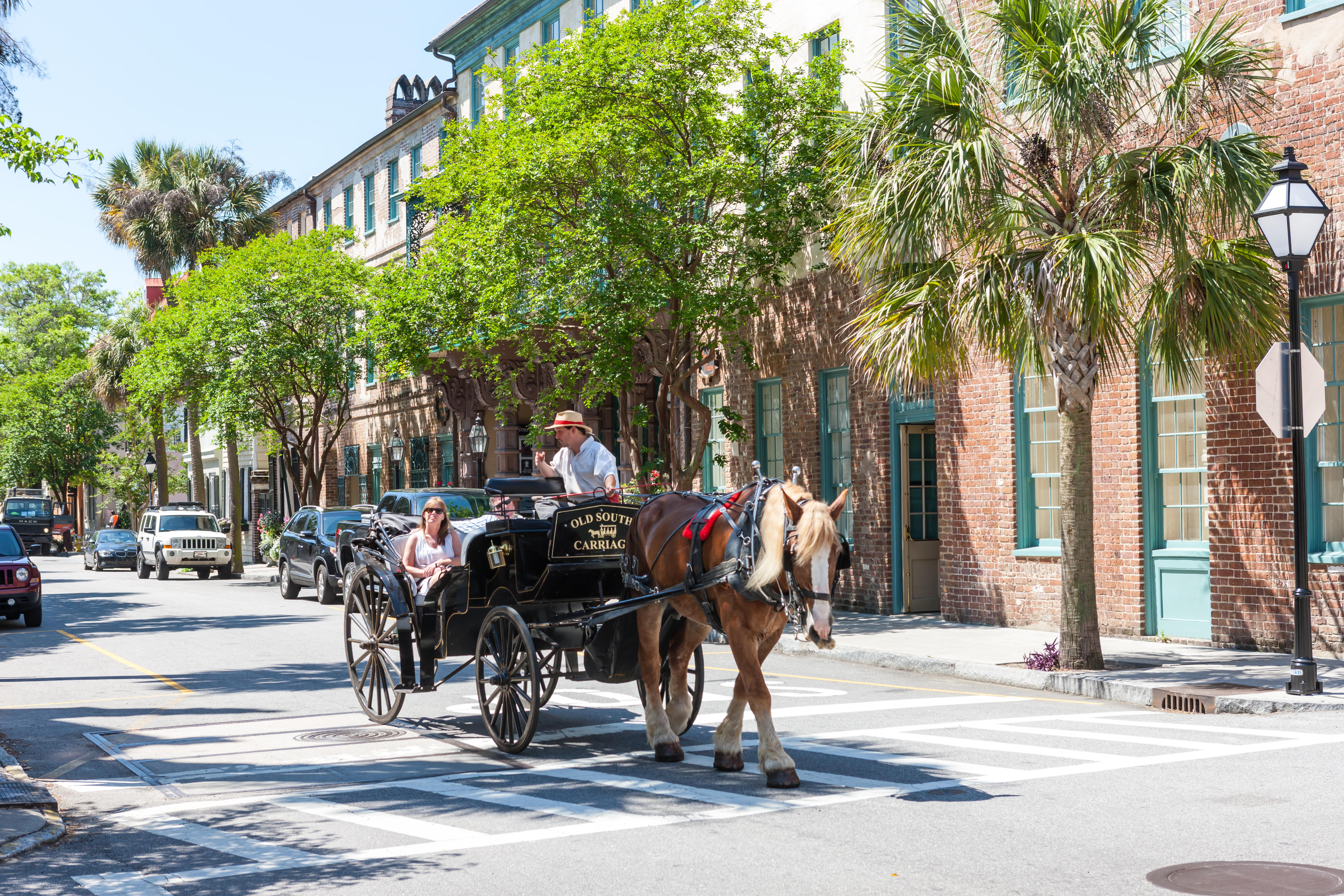 A couple takes a horse-drawn carriage tour in historic Charleston, South Carolina.