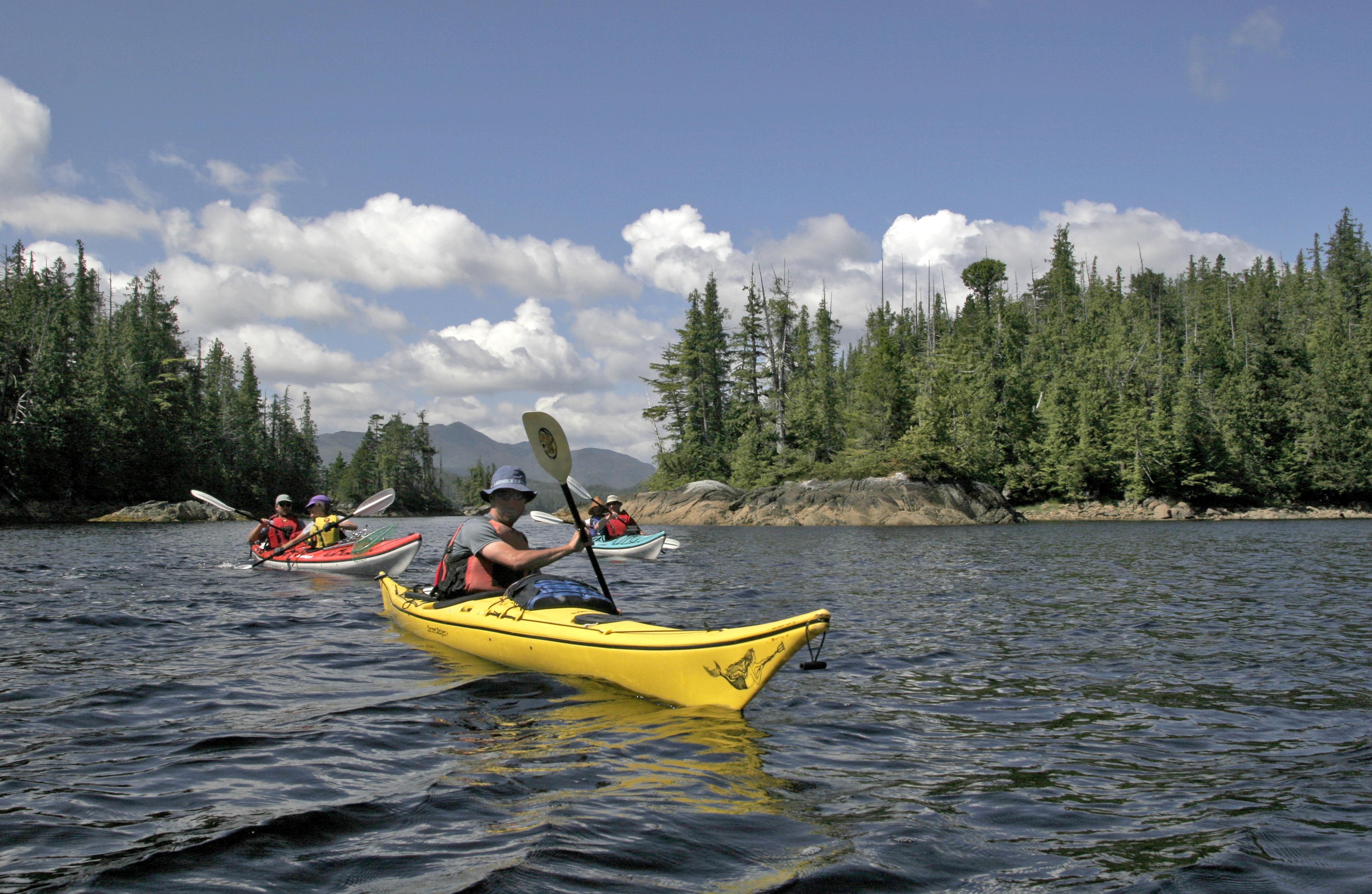 Sea Kayaking, Great Bear Rainforest Park, Canada,
