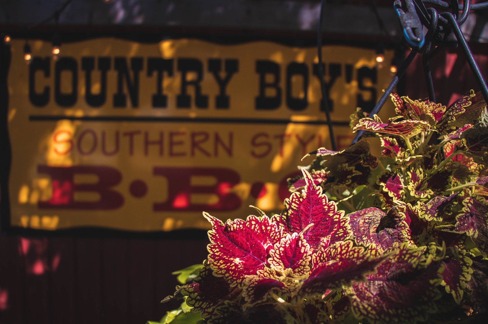 Country Boy's Southern Style BBQ
