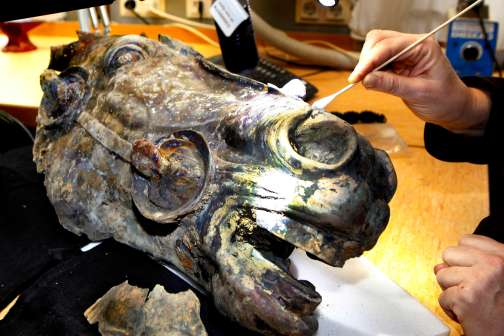 A Farmer Found an Ancient Horse Head on His Property. Now He's $1 Million Richer