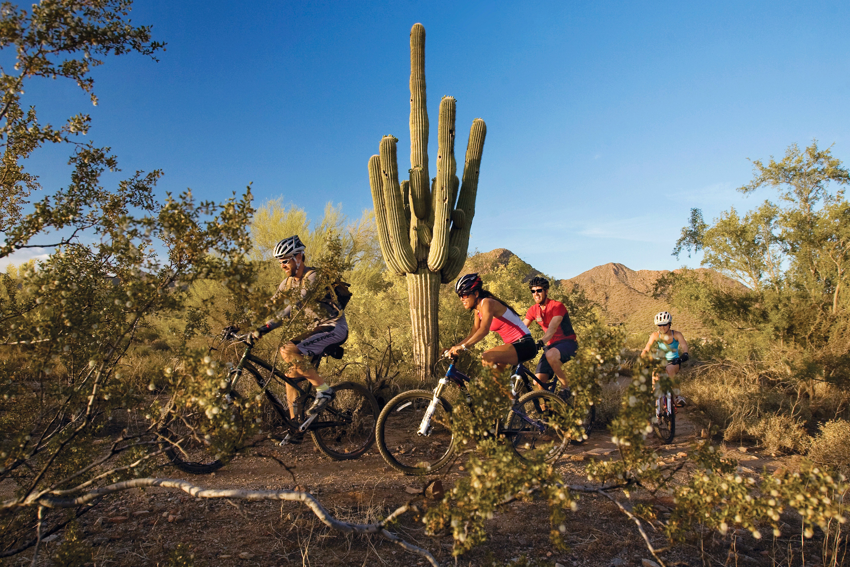 Mountain bikers navigate Lost Dog Wash Trail outside Mesa.
