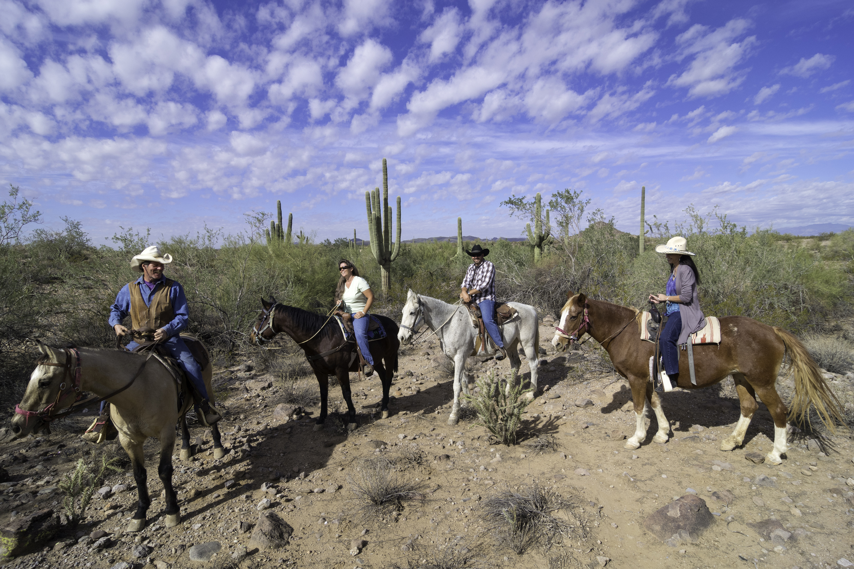 best places to live in every state-peoria arizona