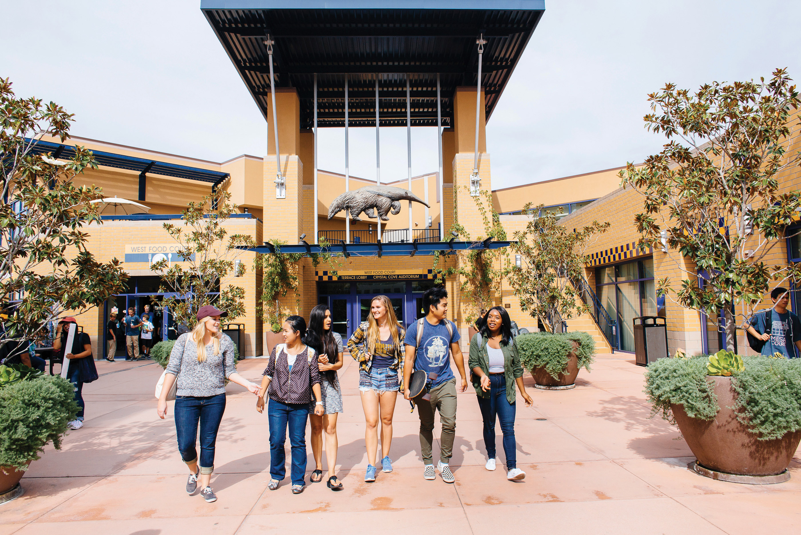 UC Irvine Transfer Acceptance Rate – CollegeLearners