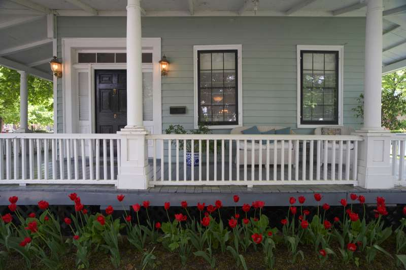 Tulips by the Porch