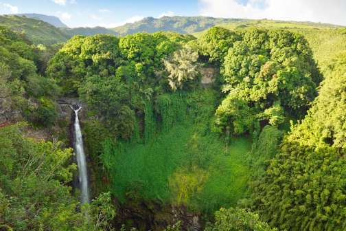 5 Ways to Bring Down the Cost of Your Dream Hawaiian Vacation