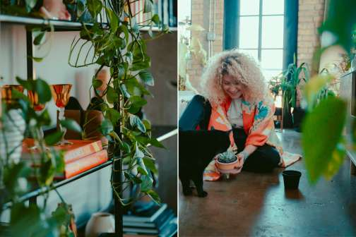 Millennials Aren't Buying Homes, but They Are Spending Thousands on Houseplants