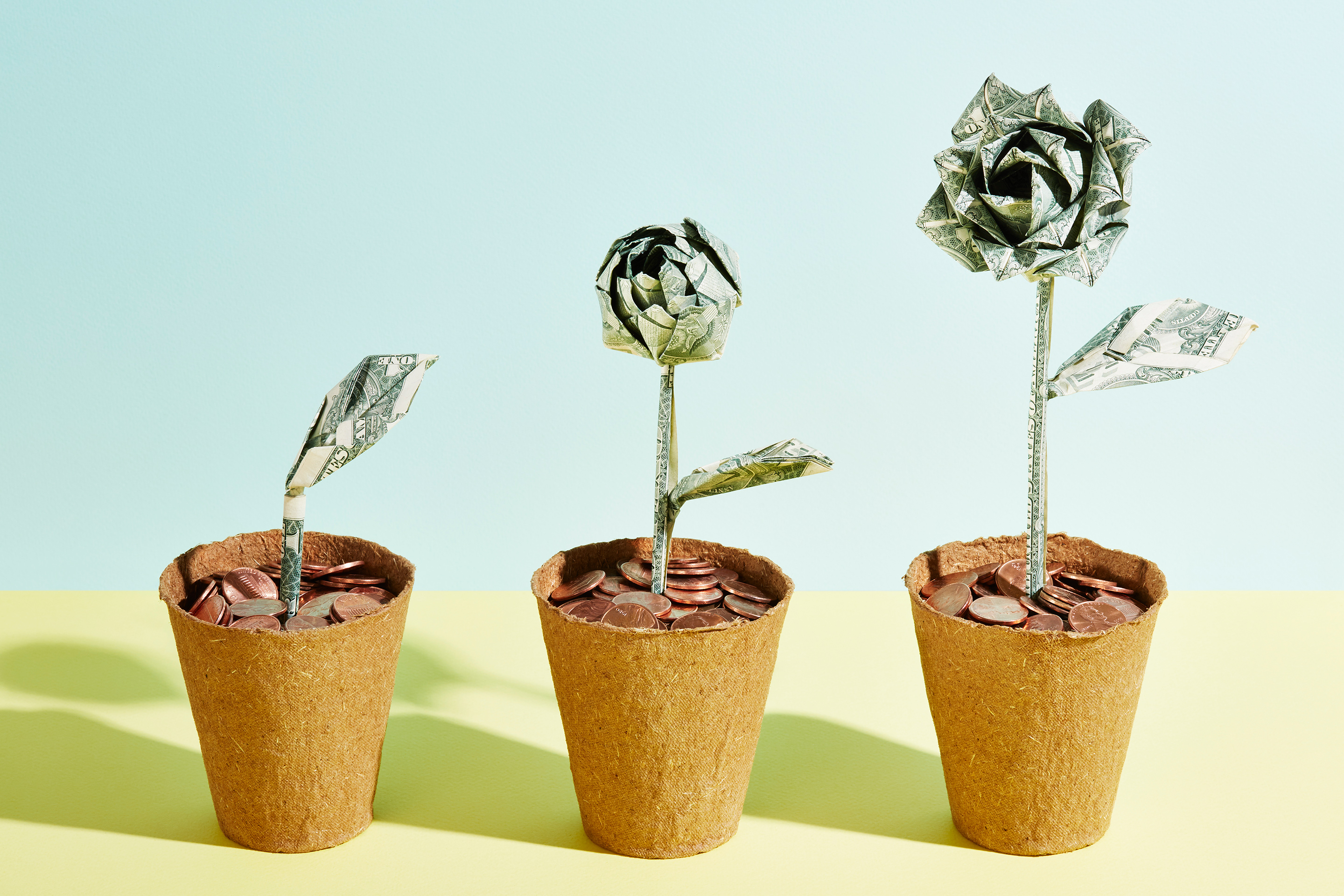 three flowerpots show a plant made of money in successive growth stages, culminating in a rose made of money