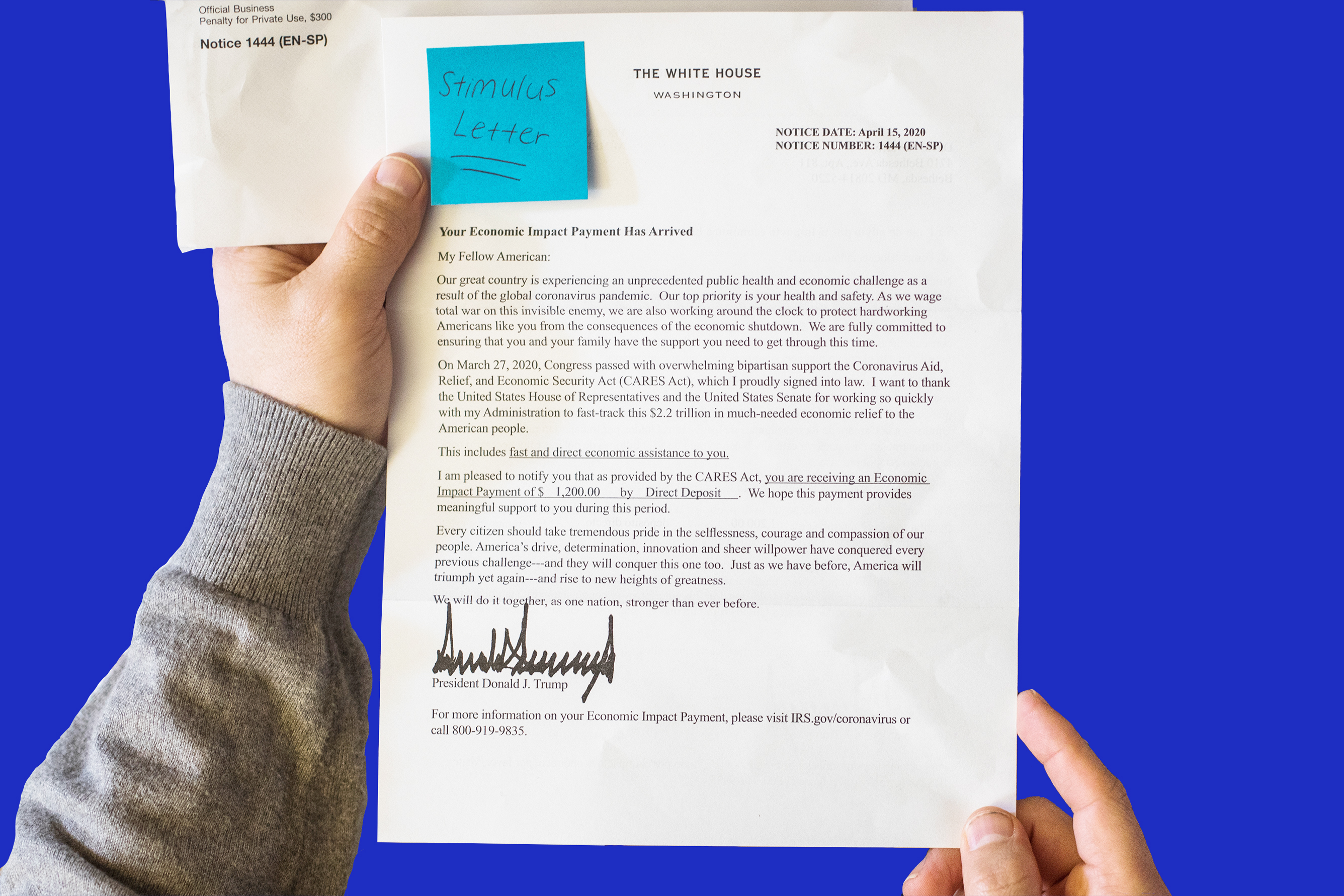 Write my cheap college essay on trump popular analysis essay proofreading website for university