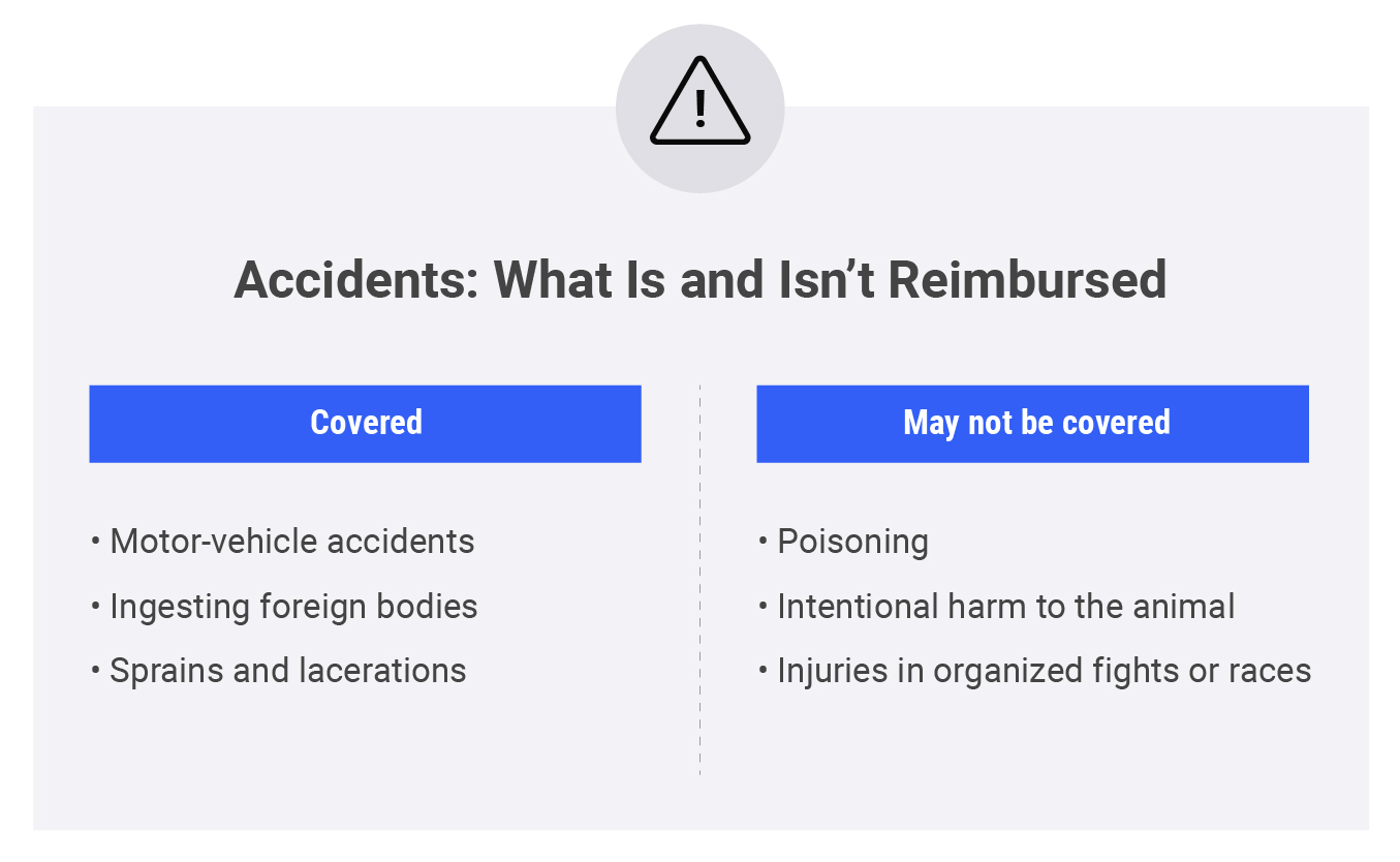 table comparing what is and isn't covered with accident coverage