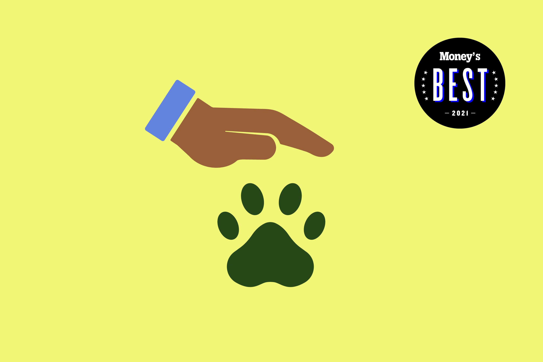 a hand pets a pawprint