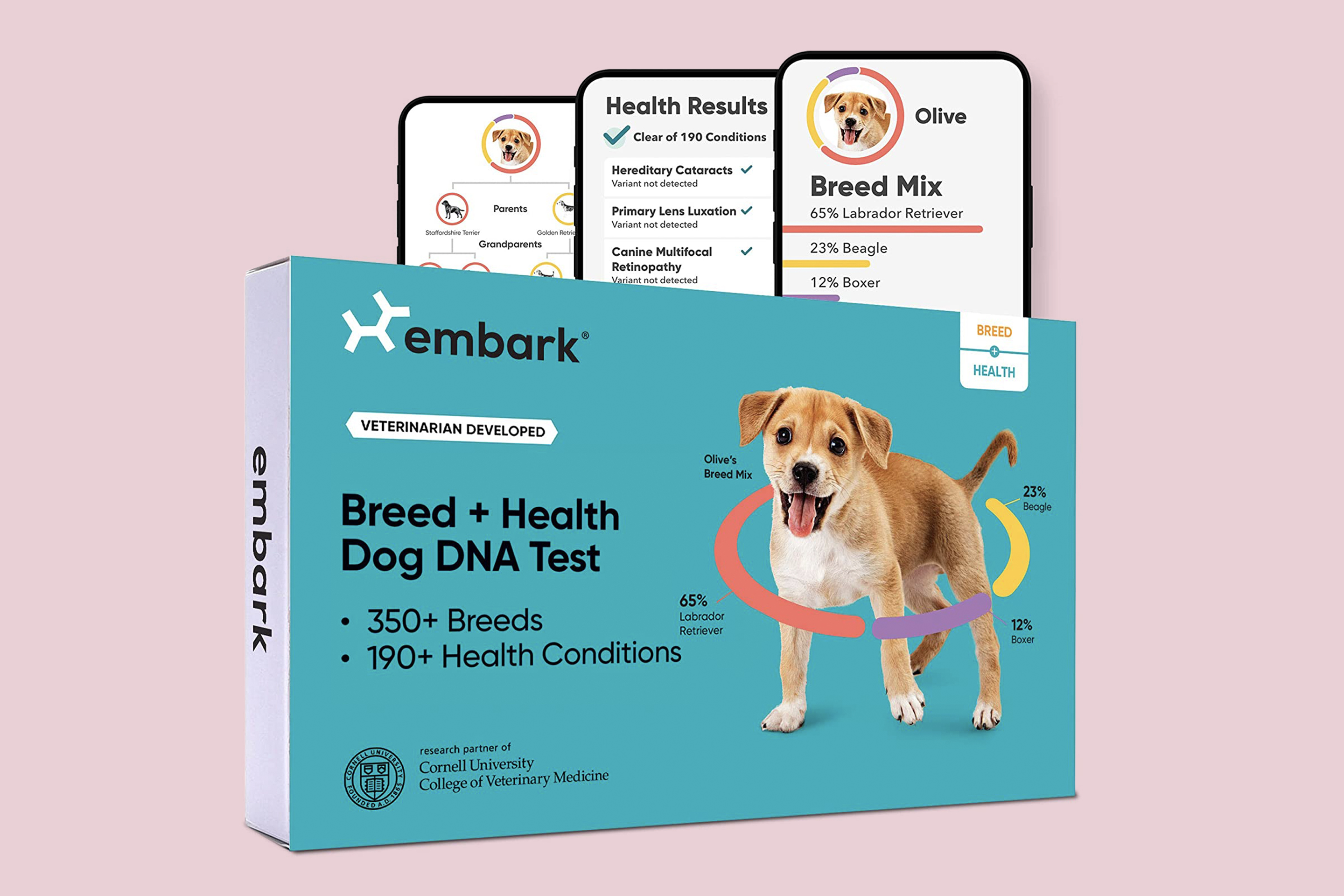 Best Dog DNA Test