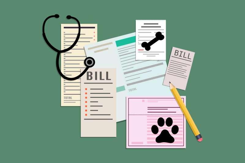 3 Payment Gotchas for Pet Insurance