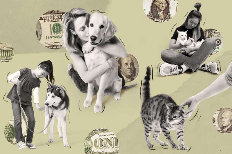 Photo Collage of pets with their owners and money in the background