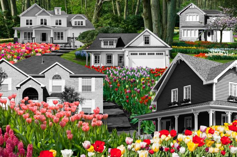 Photo collage of multiple houses on a hill in between fields of flowers