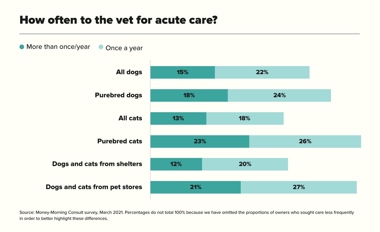 How often to the vet for acute care